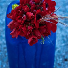 blue red